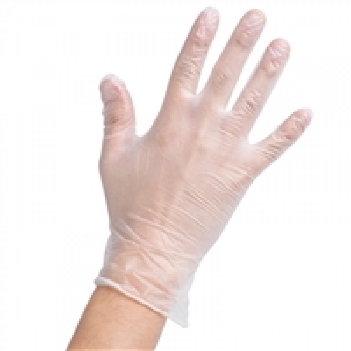 food services gloves medium