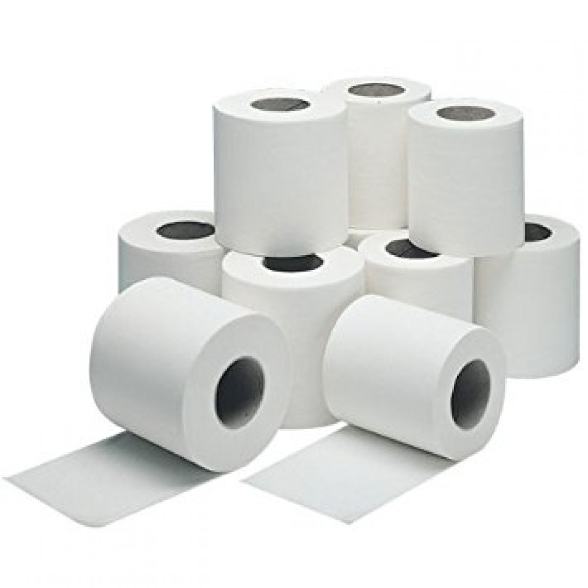 tissue in roll 9*10
