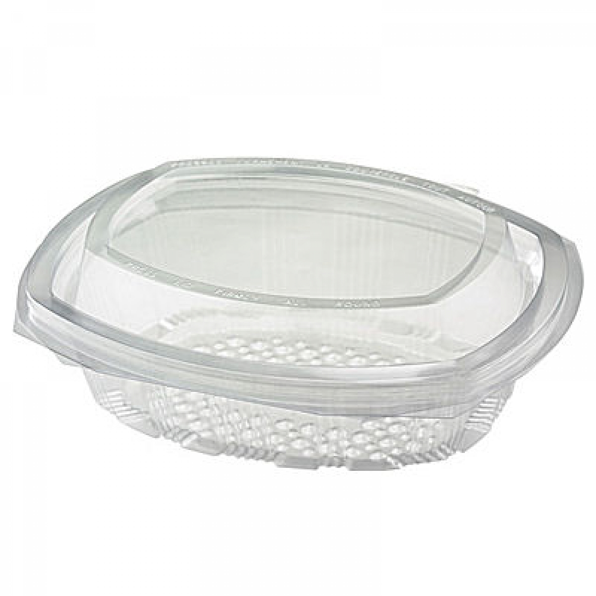 square clear hinged container with lid 250