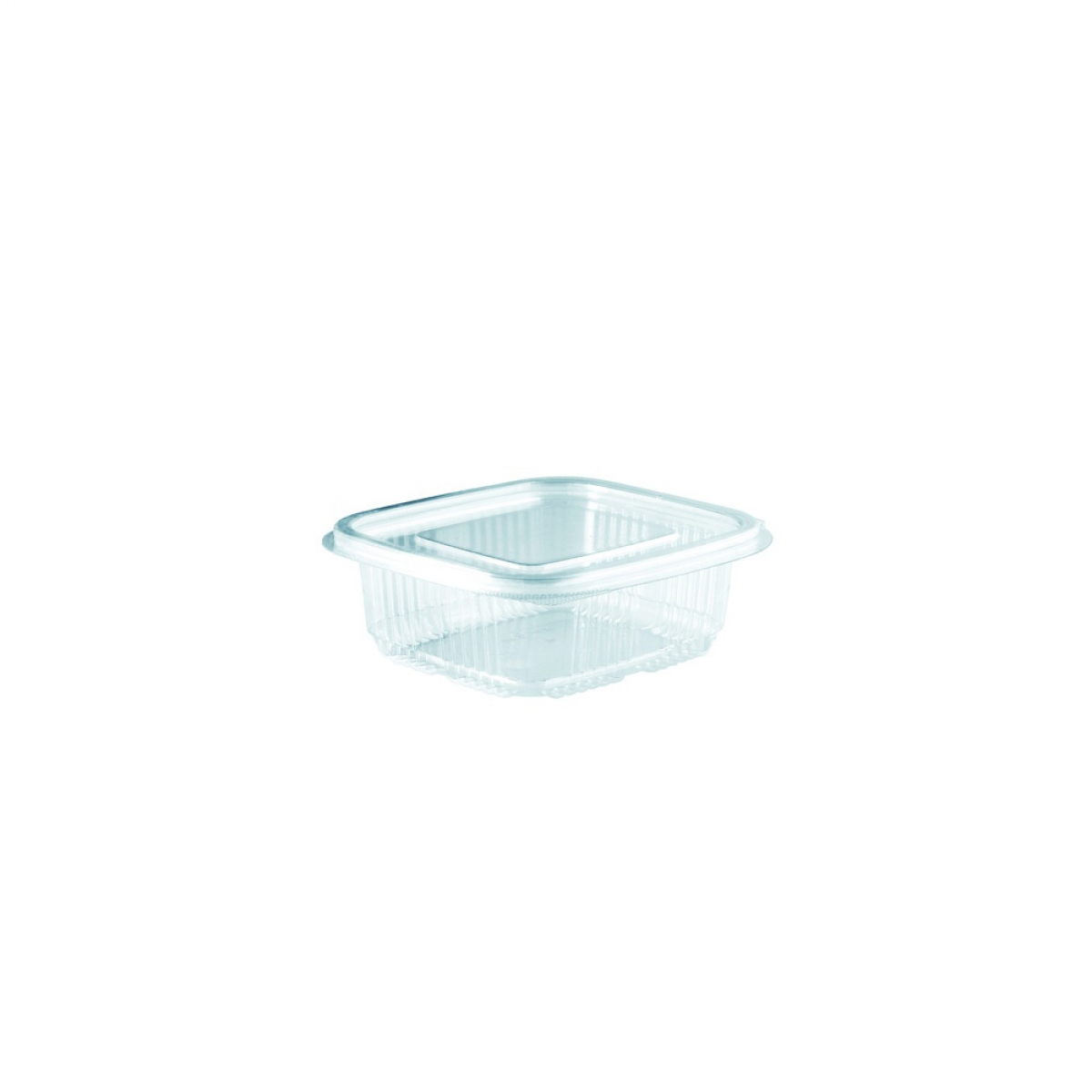 clear rectangular hinged container 102*95*55