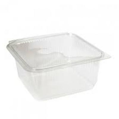 rectangular hinged containers with lid