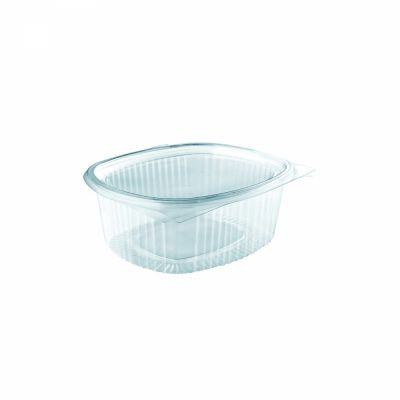 square clear hinged container with lid