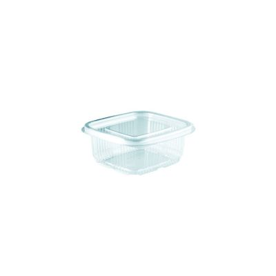 clear rectangular hinged container