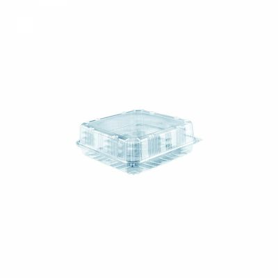clear hinged square